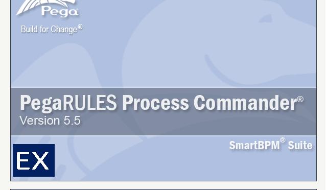 Pega common logon screenshot